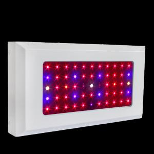 LED Grow Light Red630 Blue460 with Full Spectrum 55x3Watt
