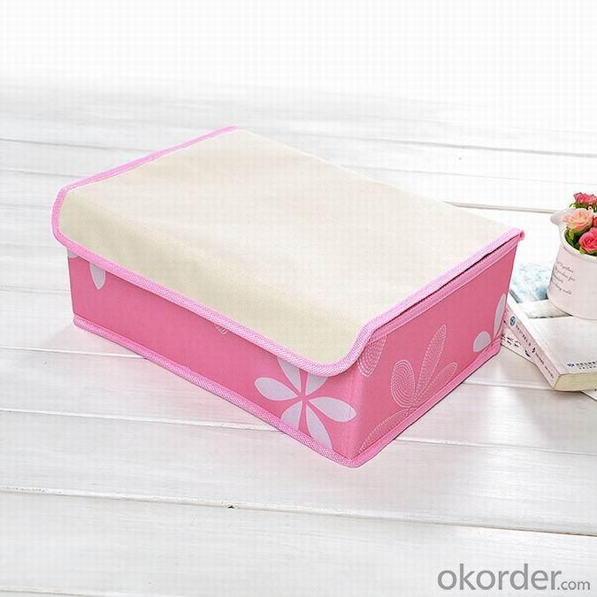 High Quality Home Storage 18 Grid Bra Storage Box