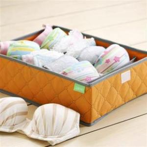High Quality Home Storage Non-Woven Bra Storage Box