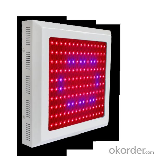 LED Grow Light Red630 Blue460 with Full Spectrum 150x1Watt  Square