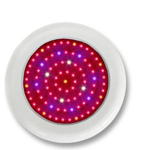 LED Grow Light Red630 Blue460 with Full Spectrum 90x1Watt