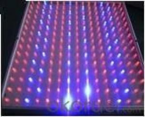 LED Low Power Grow Light  Orange610nm:30pcs OEM 14Watt