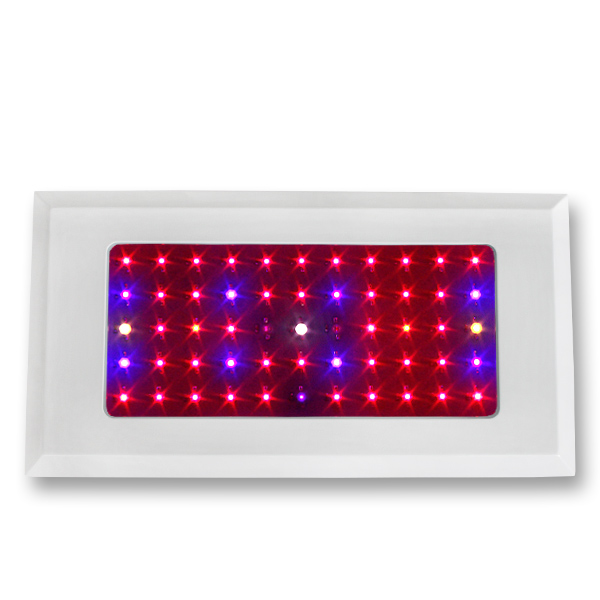 LED Grow Light Red630 Blue460 with  55x3Watt