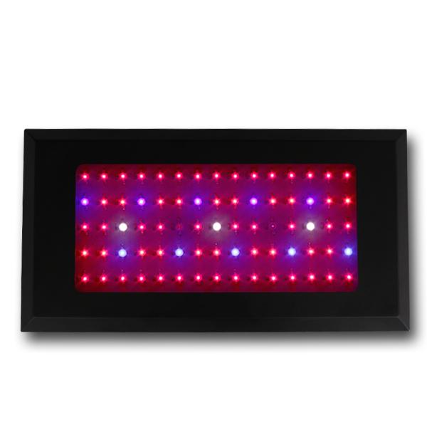LED Grow Light Red630 Blue460 with 75x3Watt