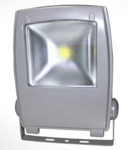 LED RGB Flood Light COB IR Inner Controller High Brightness IP 65 80W