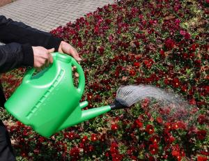 High Quality Outdoor Product PE/PP Green Simple Watering Can