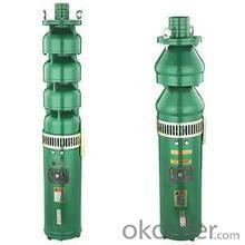 SubmersiblePump
