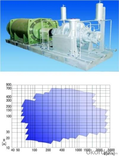Heavy Oil Chemical Process Pump
