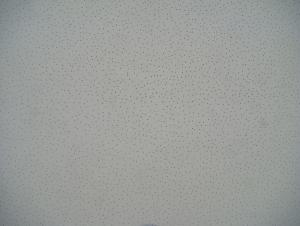 Acoustic Mineral Fiber Ceiling - MS02