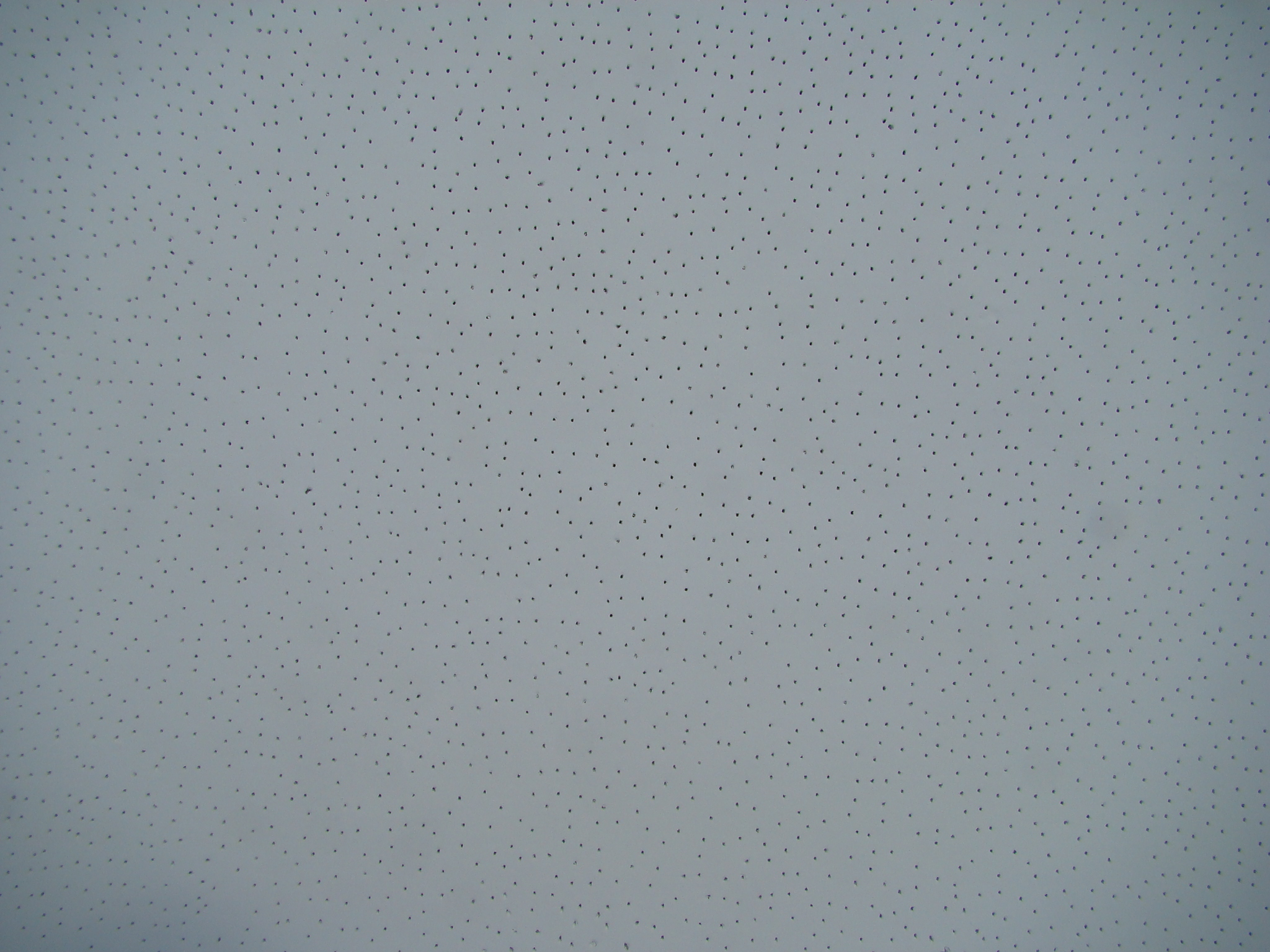 Acoustic Mineral Fiber Ceiling - Perforated