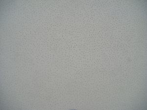 Mineral Fiber Ceiling - Perlite Sand Textures