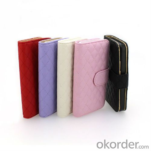 iphone5S pouch