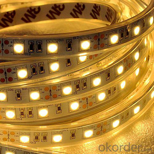 New!!! Waterproof Flexible 5050 Led Strip,Rgb Led Strip 24V