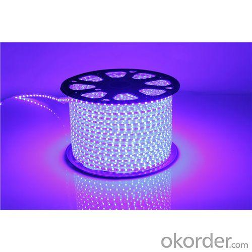 Smd 3528 Waterproof Led Strip Light,220V Decration Light