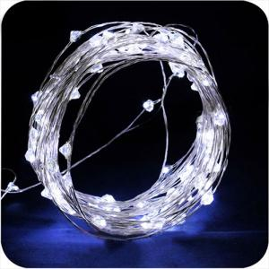 Ce And Rohs Approved Famous Led Copper String Light