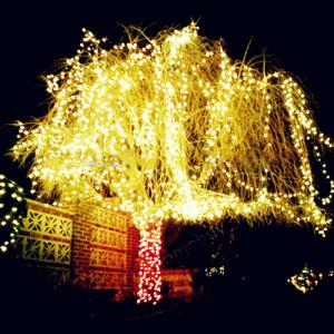 New Christmas Decorations Battery Powered Led Copper String Lights