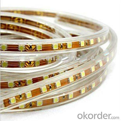 Hot Selling Factory Directly Flexible Led Strip 5050 Using For Decoration