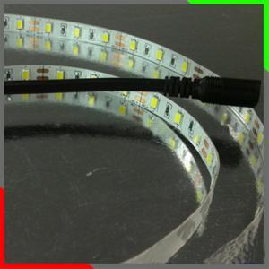 Factory Newest No Need Power Supply 110V/220V 60Leds/M Flexible Led Strip Light Strip Led Strip 5050