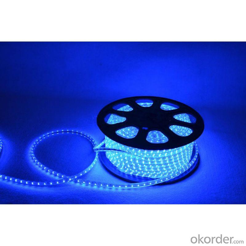 Factory Price Led Strip 5050 Rgb Ip66 100M/Roll 220V Led Flexible Strip Led Strip Lights