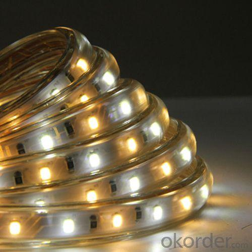 Hot Sale Double Line 120Led/M Waterproof Rgbw Led Strip 5050