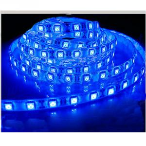 Smd 3528 30Led/Meter Ip65 / Ip67 Blue Color Led Strip