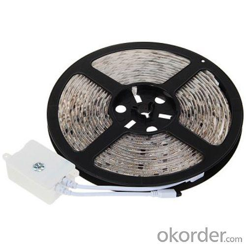 Rgb 12V 5M Waterproof Epoxy Ip65 Smd5050 300Led Patented Design Flexible Led Strip Light
