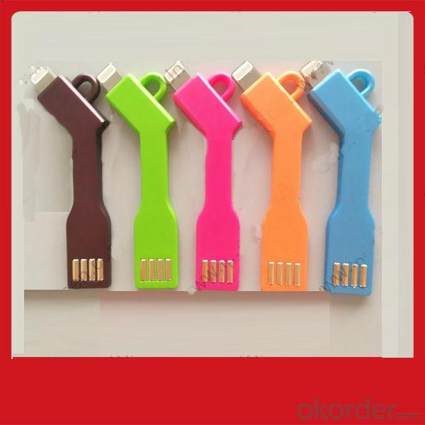 Usb Key Keychain Keyring Usb Cable Charger And Data For Iphone 5 5S 5C