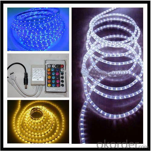 New Design Jz-3528-60 Led Flexible Strip Light White Yellow Blue Red