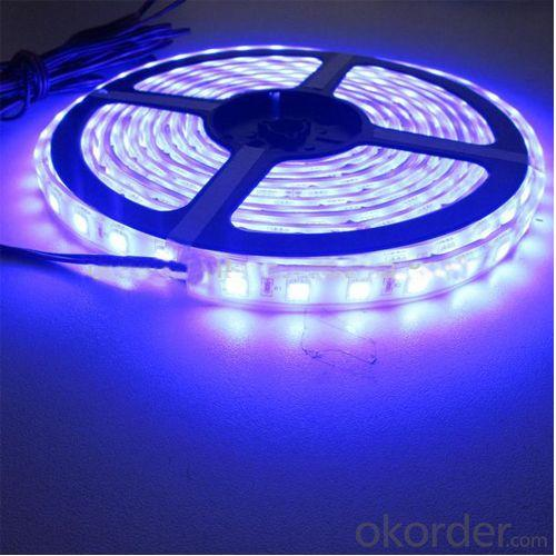 Ul Listed Dc12V 60Leds Per Meter Waterproof Smd5050 Flexible Led Strip
