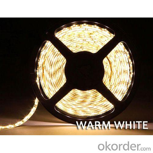 Smd 5050 60Led/Meter Flexible Led Strip Light