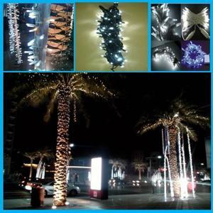 Ip65 Led Christmas String Light/Outdoor Garland/Led String Light