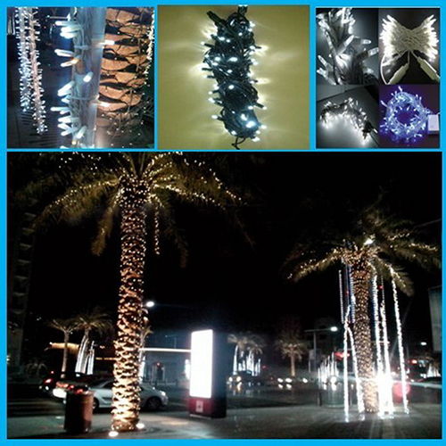 Ip65 Led Christmas String Light/Outdoor Garland/Led String Light