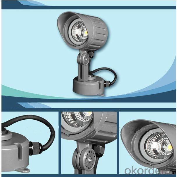 High Power LED Landscape Light IP65 Ar3Bqm0128A 1*10W Cob From China Manufacturer