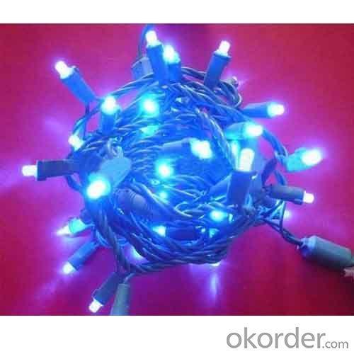 35L 5Mm Led Christmas String Lights
