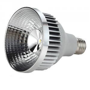 High Quality China Manufacturer Cob Led Lights