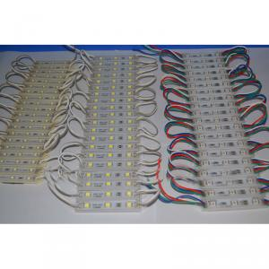 Express Products Small LED Module 12V Ip68