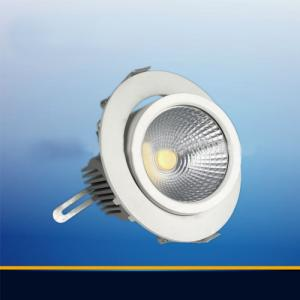 Round Design With Rotation And Gimbal Housing 20W 30w Ajustable Led Downlight