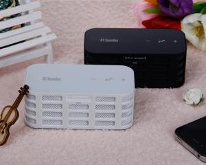 Newest DSP Effection Wireless Bluetooth Speaker