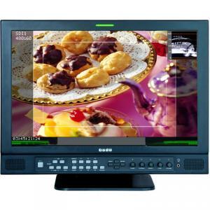 17 LCD Monitor