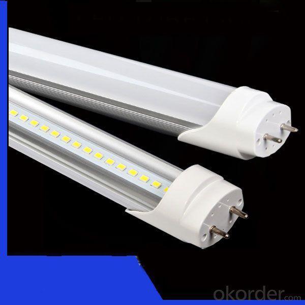 Wholesale High Bright Best Qaulity 12W T5 T8 6500K Led T8 Tube Lights Led Tube 600Mm T8