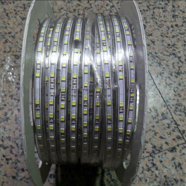 SMD 5050-60 LED Strip Light With Ce Rohs Certificates