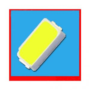 New Epistar Chip 3014 SMD Led With Specification (10-12Lm 0.1W)
