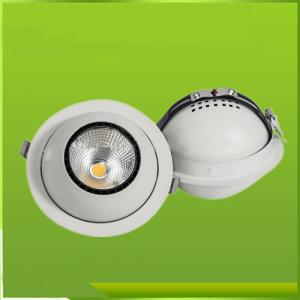 Dimmable LED Downlighting 20W/COB LED DOWNLIGHT/Popular Led Downlights