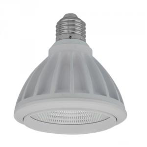 High Quality Cob 12W E27 Led Par30 Dimmable