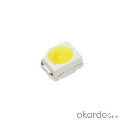 White Top LED Plcc 2 LED 3528 LED