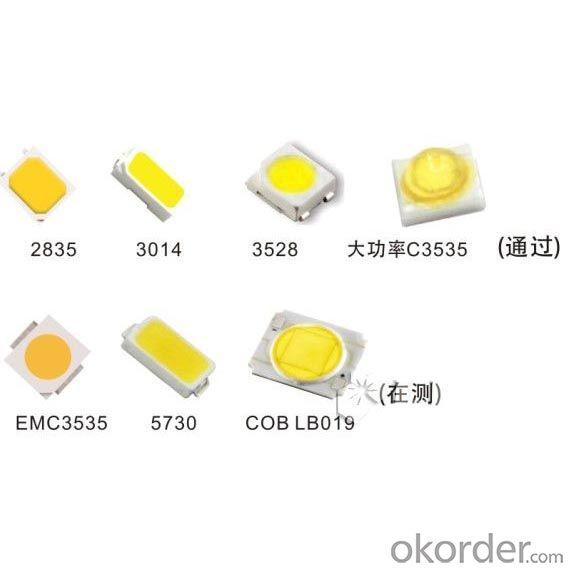 High Qulaity 5050 3528 SMD LED (Diode) from China Factory