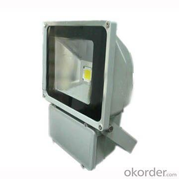 Led Reflector 50W At High Quality