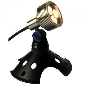 Ip68 LED Garden Light 12V 3X2W Cree LED From China Manufacturer