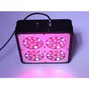 New Plant Grow Light 120W LED Hydroponic System By Professional Manufacturer