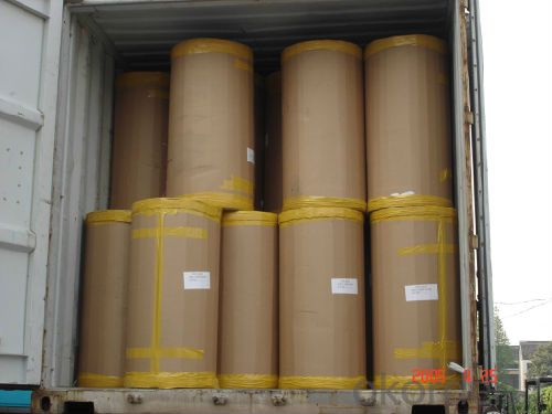 Bopp Printed Tape Jumbo Roll